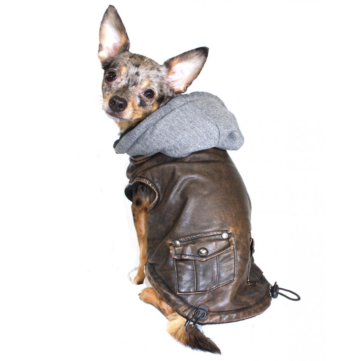Vintage Bomber Dog Jacket by Hip Doggie - Gray Hood