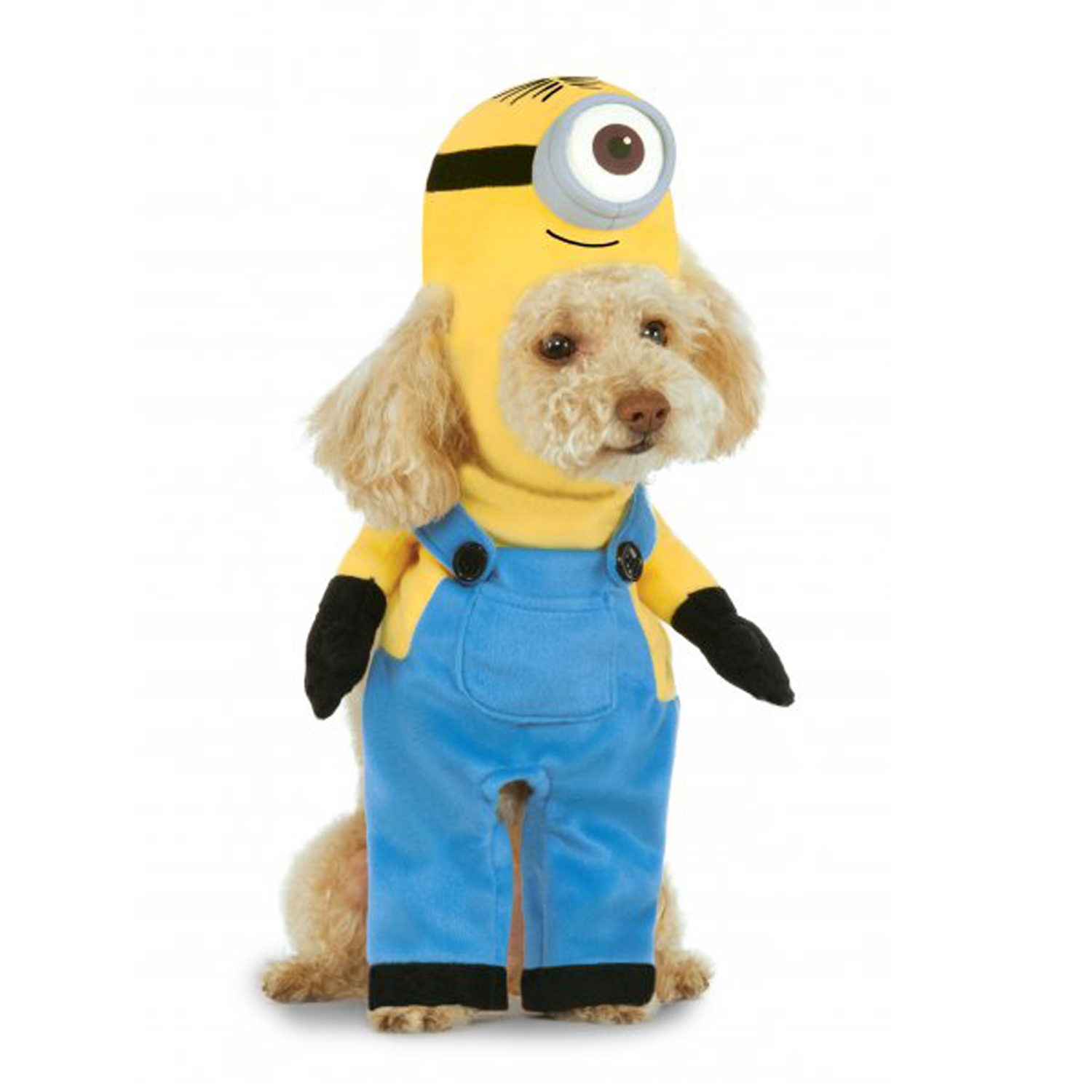 Walking Minion Dog Costume - Stuart  sc 1 st  BaxterBoo & TV and Movie Dog Costumes | BaxterBoo