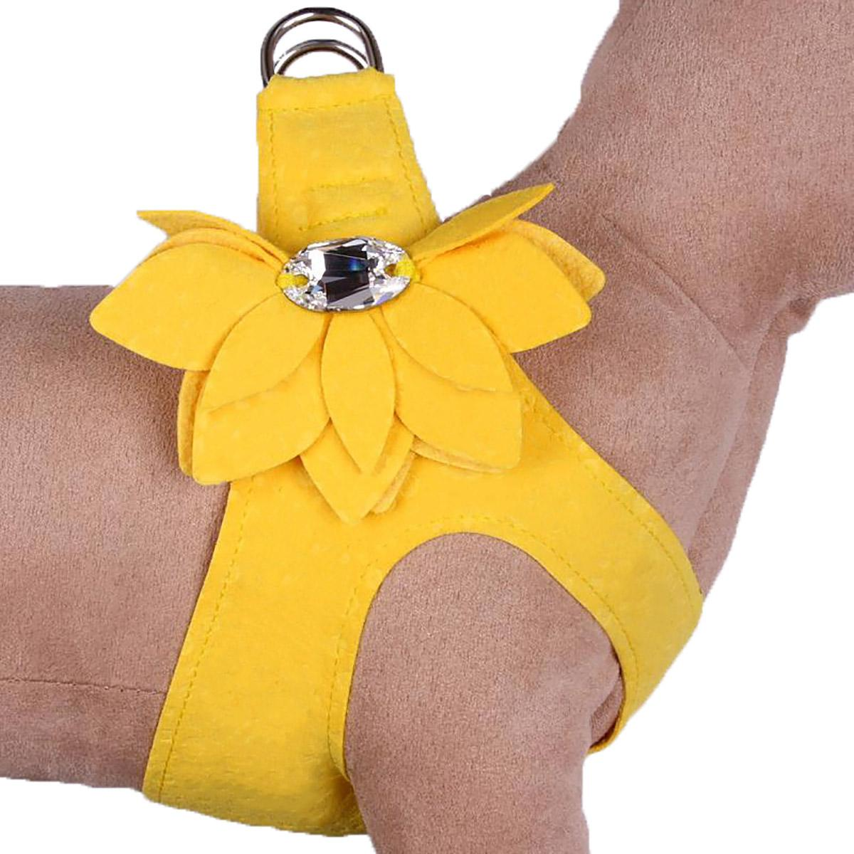 Water Lilly Step-In Dog Harness by Susan Lanci - Sunshine