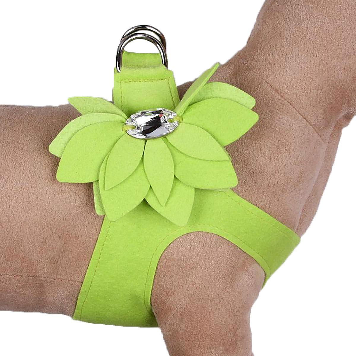 Water Lilly Step-In Dog Harness by Susan Lanci - Kiwi