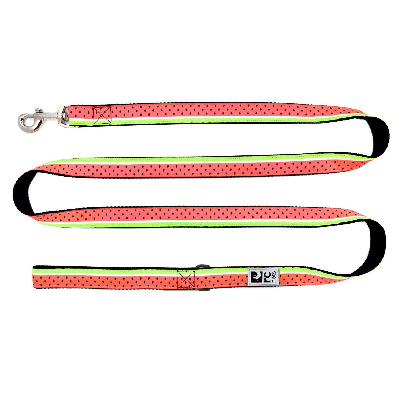 Watermelon Dog Leash by RC Pet