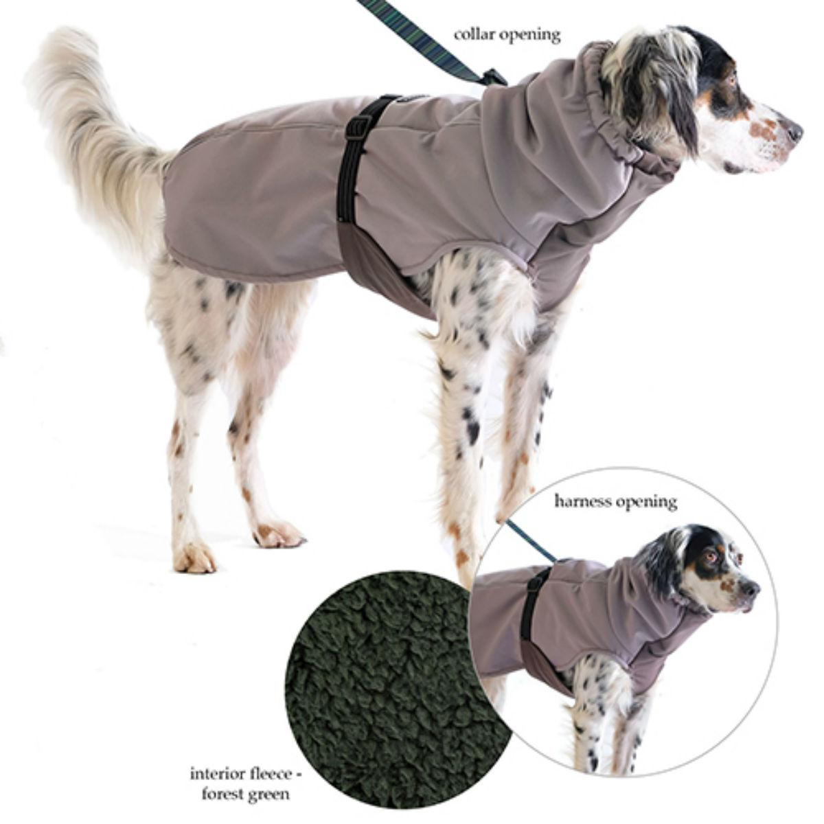 Winter Paw Dog Coat by Gold Paw - Silver with Hunter