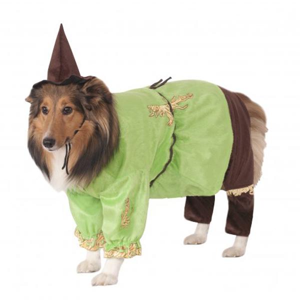 Wizard of Oz Scarecrow Dog Halloween Costume