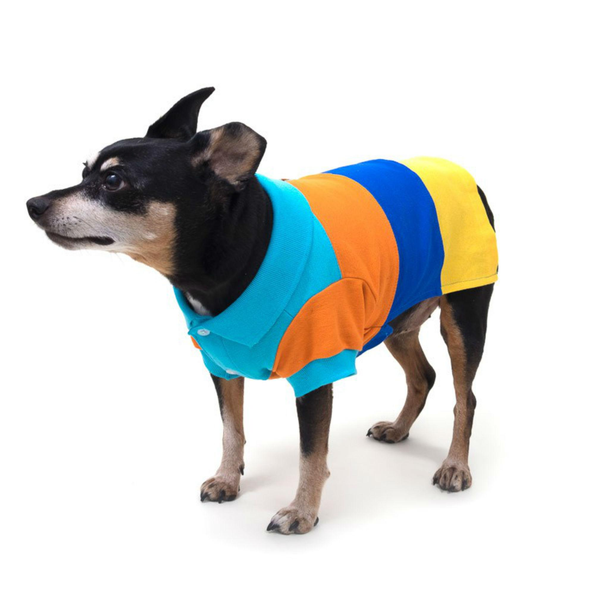 Worthy Dog Color Block Dog Polo - Primary