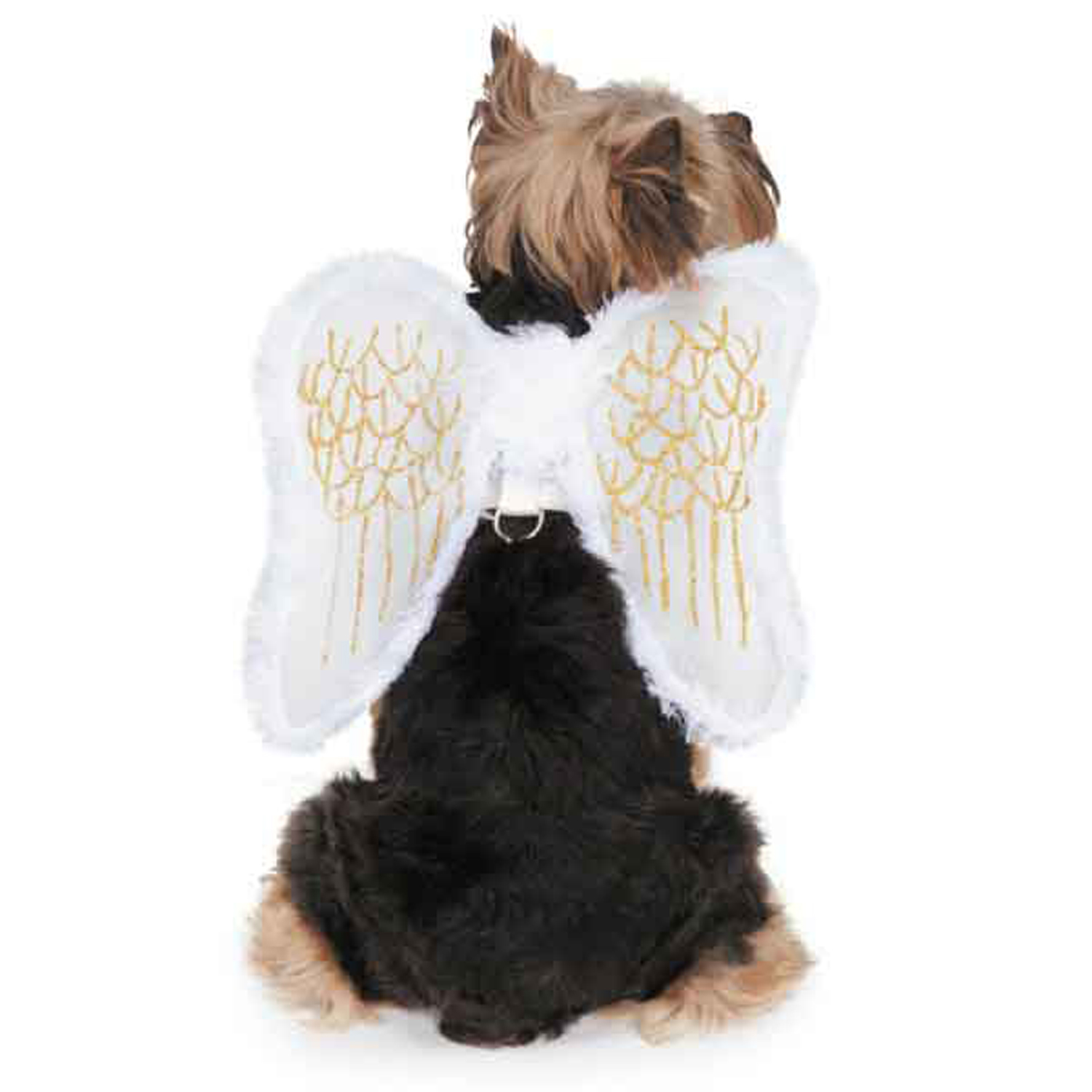 Zack and Zoey Angel Wing Dog Harness Costume | BaxterBoo