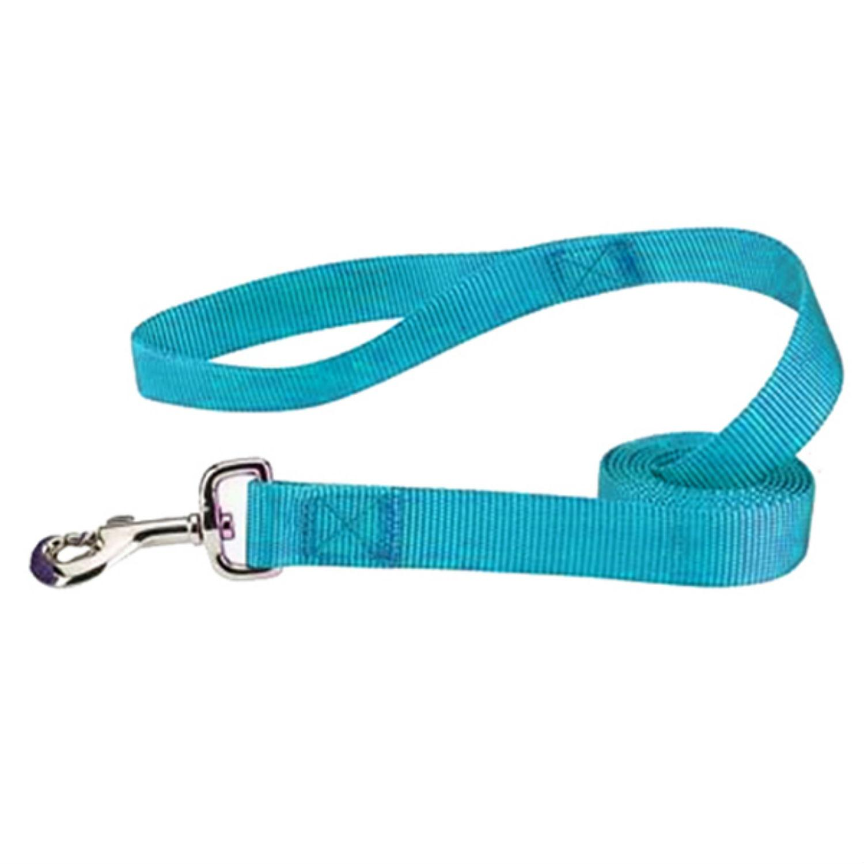 Casual Canine Nylon Dog Leash - Bluebird