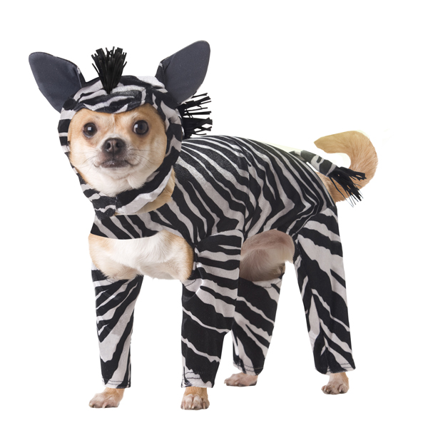 Zebra Costume for Dogs