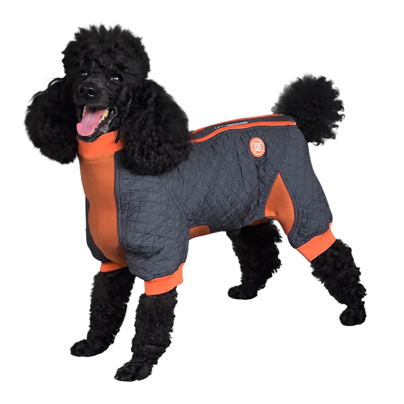 Zippy Dynamics Springy Dog Coat