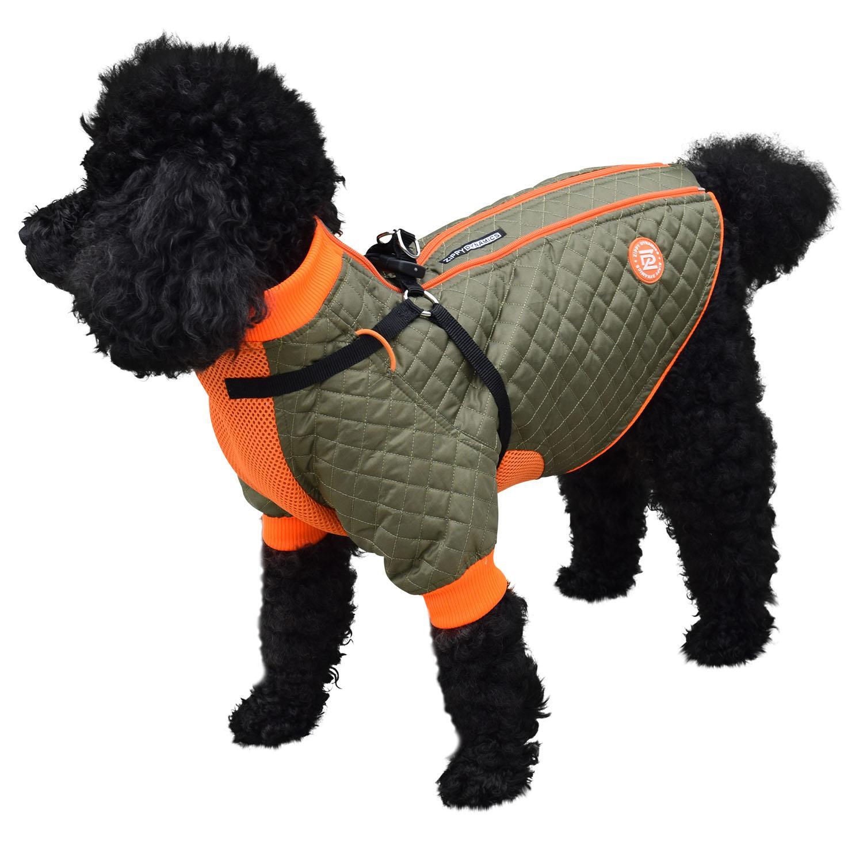 Zippy Dynamics Trendy Dog Parka