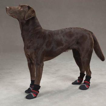 Dog Boots & Shoes products