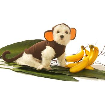Dog Costumes products