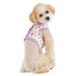 View Image 4 of Hopper Pinka Dog Harness by Pinkaholic - Purple