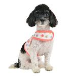 View Image 4 of Hopper Pinka Dog Harness by Pinkaholic - Indian Pink