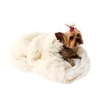 View Image 1 of 3-in-1 Cozy Dog Cuddle Sack - Ivory Powder Puff