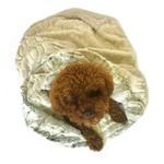 View Image 1 of 3-in-1 Cozy Dog Cuddle Sack - Koala and Frosted Snow Leopard