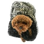 View Image 1 of 3-in-1 Cozy Dog Cuddle Sack - Black Spotted Leopard