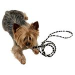View Image 1 of Ultrasuede Dog Leash by The Dog Squad - Zebra
