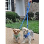 View Image 1 of 6 Way Multi-Function Dog Leash by Doggie Design - Cobalt Blue