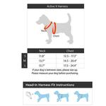 View Image 6 of Active X Dog Harness by Gooby - Orange