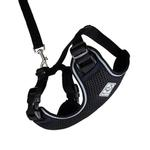 View Image 1 of Adventure Kitty Cat Harness with Leash by RC Pet - Black