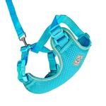 View Image 1 of Adventure Kitty Cat Harness with Leash by RC Pet - Teal