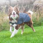 View Image 2 of Aira Dog Rain Jacket by RuffWear - Twilight Gray