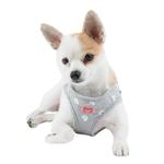 View Image 2 of Algo Dog Harness Vest by Puppia - Gray