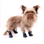 View Image 5 of All Weather Dog Boots - Blue