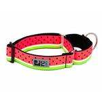 View Image 1 of All Webbing Martingale Dog Training Collar - Watermelon
