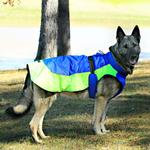 View Image 2 of Alpine All-Weather Dog Coat by Doggie Design - Blue and Green