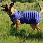 View Image 2 of Alpine Extreme Weather Puffer Dog Coat by Doggie Design - Blue