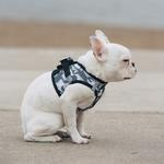 View Image 4 of American River Camo Choke-Free Dog Harness by Doggie Design - Gray
