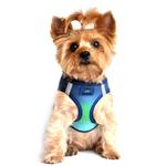 View Image 1 of American River Choke-Free Dog Harness by Doggie Design - Northern Lights Ombre
