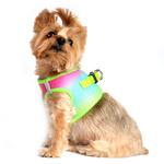View Image 2 of American River Choke-Free Dog Harness by Doggie Design - Rainbow Ombre