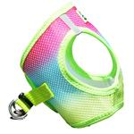 View Image 4 of American River Choke-Free Dog Harness by Doggie Design - Rainbow Ombre