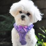 View Image 3 of American River Choke-Free Dog Harness by Doggie Design - Purple Polka Dot