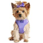 View Image 1 of Wrap and Snap Choke Free Dog Harness by Doggie Design - Paisley Purple