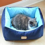 View Image 1 of Armarkat Pet Bed - Navy Blue/Sky Blue
