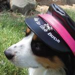 View Image 1 of Bad to the Bone Biker Dog Hat - Black with Magenta Trim
