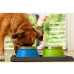 View Image 1 of Basecamp Dog Bowl by Ruffwear - Blue Dusk