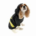 View Image 3 of Bat Dog Costume