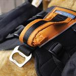 View Image 3 of Baxter Dog Backpack by Kurgo - Black and Orange