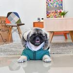 View Image 5 of Bellamy Hooded Dog Vest by Puppia - Hunter Green/Khaki