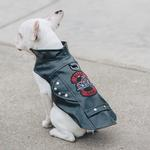 View Image 5 of Biker Dawg Motorcycle Dog Jacket by Doggie Design - Black
