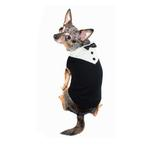 View Image 2 of Black Tux Dog Sweater by Hip Doggie