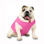 View Image 1 of Blank Ribbed Dog Tank - Raspberry