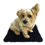 View Image 2 of Bella Dog Blanket by The Dog Squad - Black