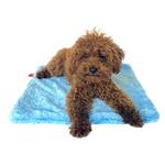 View Image 1 of Bella Dog Blanket by The Dog Squad - Light Blue