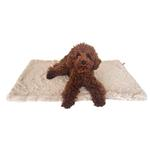 View Image 1 of Bella Dog Blanket by The Dog Squad - Taupe