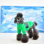 View Image 5 of Blaze Dog Shirt by Puppia - Green